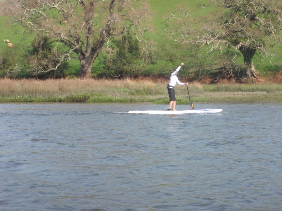 Head of the Dart SUP race